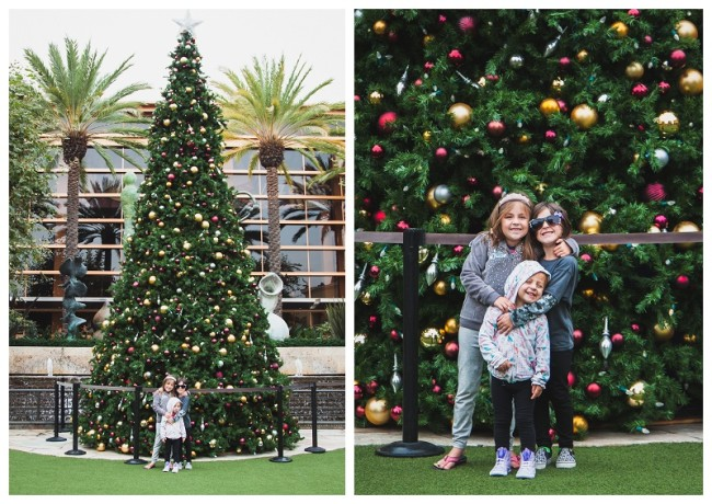 kids standing in front of a christmas tree